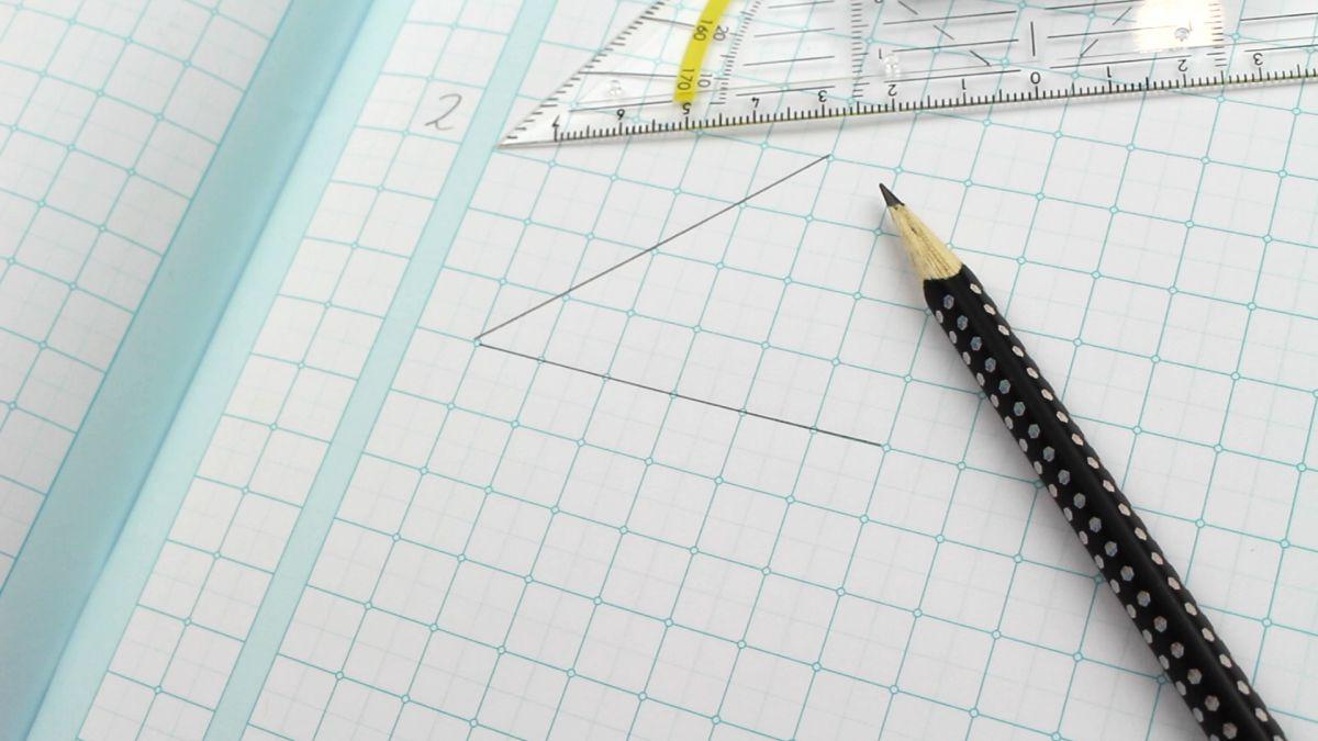wiskundeschrift schrijfvriend a4 ruit 1x1cm